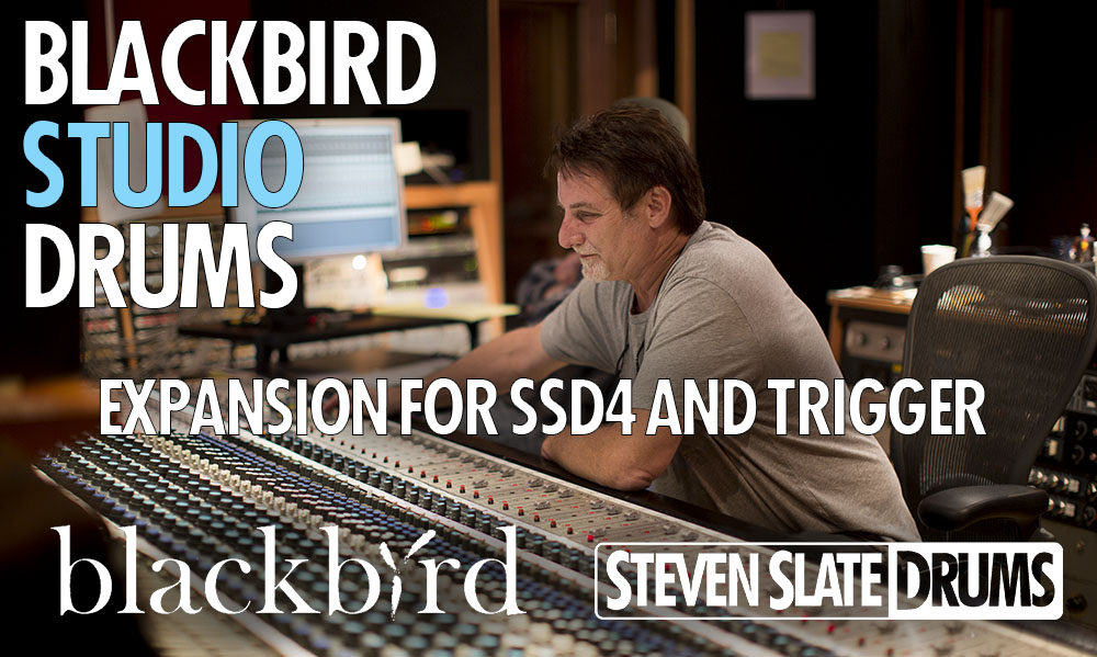 blackbird-cover-image